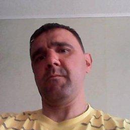 александр, 45 лет, Ивангород