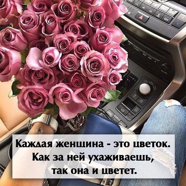 особенность цветы картинки с цитатами водителями проблем тоже