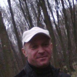богдан, 44 года, Жашков
