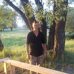 александр, 31 год, Волчиха