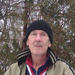 Гриша, 64 года, Крымка