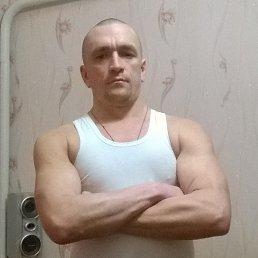 Анатолий, 40 лет, Попельня