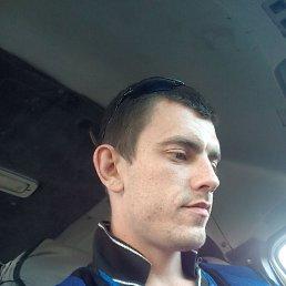Алексей, 28 лет, Лысьва