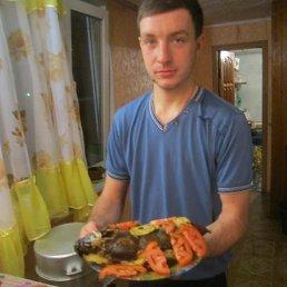 Артем, Инсар, 28 лет