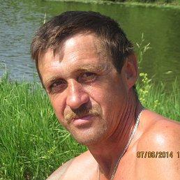 Алексей, 52 года, Гаврилов-Ям