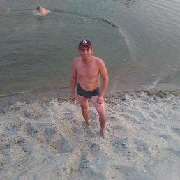 Адамов, 41 год, Новосибирск
