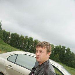 Андрей, 29 лет, Красный Холм