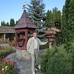 Богдан, 56 лет, Борщев