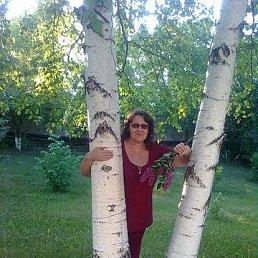 Тамара, 60 лет, Заринск