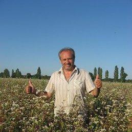 Анатолий, 57 лет, Карловка