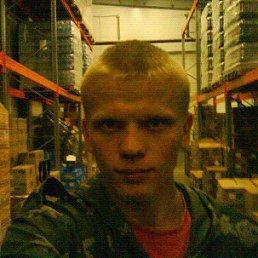 Алексей, 29 лет, Изобильный