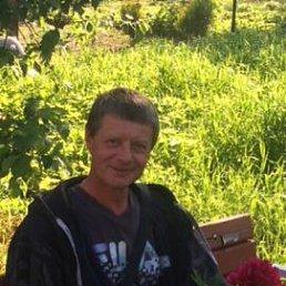 Денис, 29 лет, Венев
