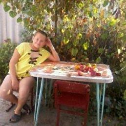 Николай, 18 лет, Купянск