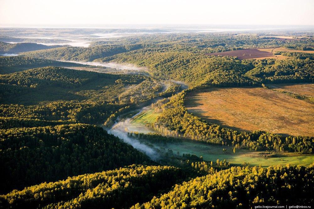 заявок природа новосибирск фото фото