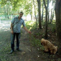 Артём, 34 года, Белополье