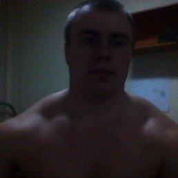 Михаил, 29 лет, Калач-на-Дону