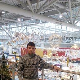 Андрей, 24 года, Хотьково