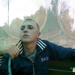 SASHA, 28 лет, Шостка