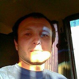 юрий, 39 лет, Пожва