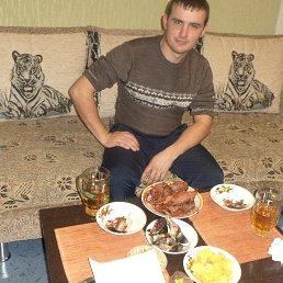 Михаил, 29 лет, Нефтегорск