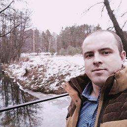 Александр, 28 лет, Тихвин