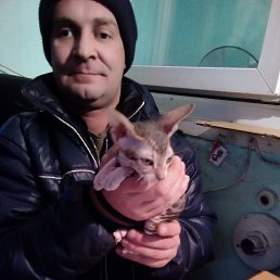 Вован, 37 лет, Зауральский