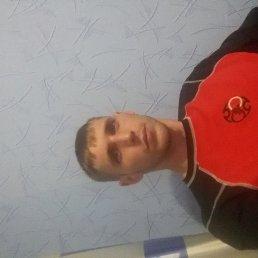 Dimitriy, 31 год, Крыжополь
