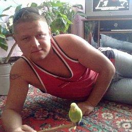 Павел, 37 лет, Верховцево