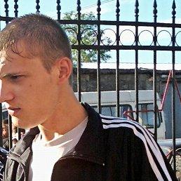 Александр, 29 лет, Топки
