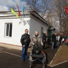 Елена, 52 года, Солнечногорск