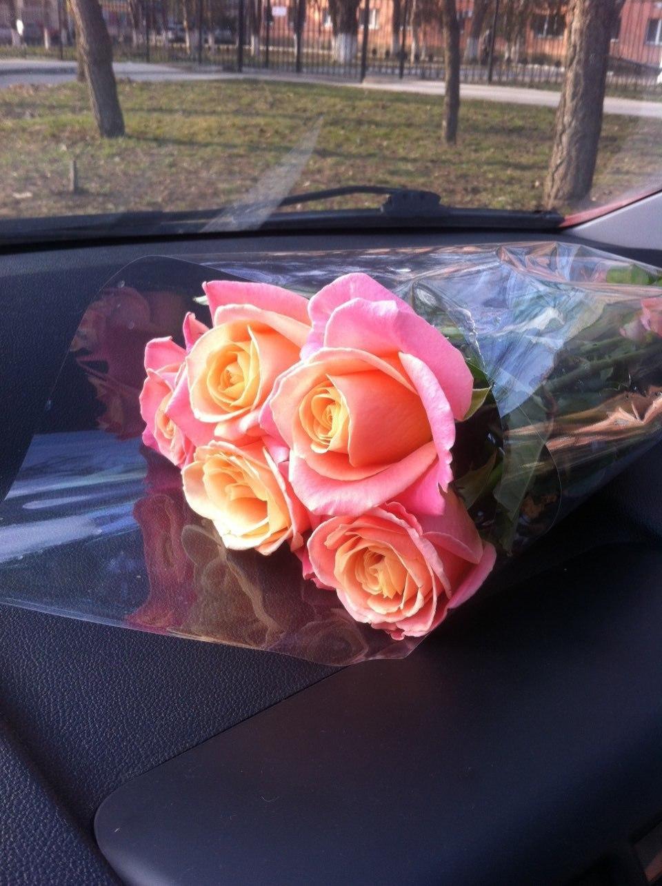 думала, она фото роз в машине на стекле аудиторских