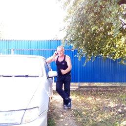 вова, 60 лет, Тбилисская