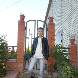 Владимир, 28 лет, Кыштовка