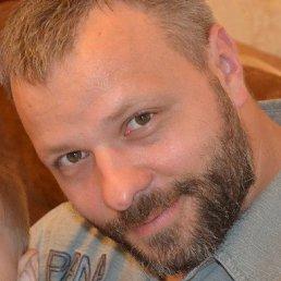 Юрий, 41 год, Сосновый Бор