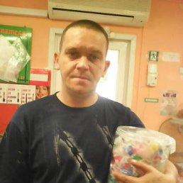ВАВАН, 36 лет, Косиха