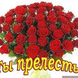 Zilya, Казань