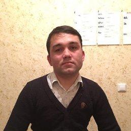 Dilmurod, 26 лет, Ульяновское
