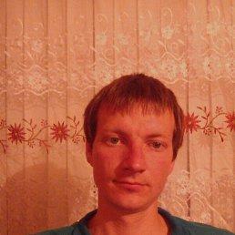 Евгений, 28 лет, Бежецк