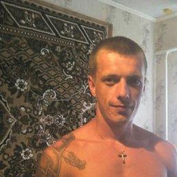 Сергей, 26 лет, Волчанск
