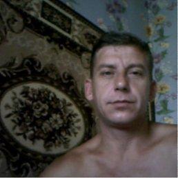 Андрей, 41 год, Брянка