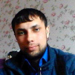 Артём, 28 лет, Волхов