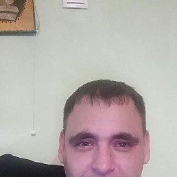 alex, 36 лет, Тирасполь