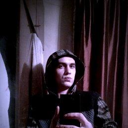 Аркадий, 26 лет, Моршанск