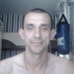 сергей, 37 лет, Калачинск