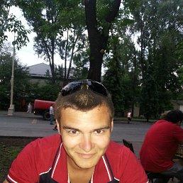 Саша, 27 лет, Звенигород