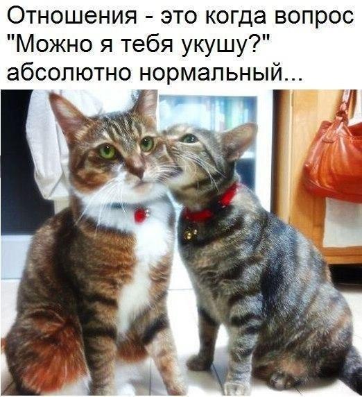 ...влюбиться :)