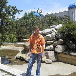 Дмитрий, 43 года, Поспелиха