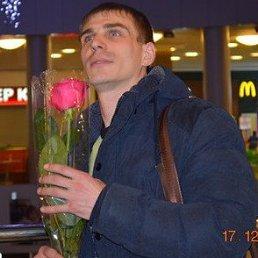 Николай, 29 лет, Алексеевка