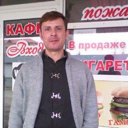 Сергей, 41 год, Кировск