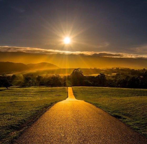 Золотой путь картинки